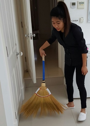 Domestic Cleaner London
